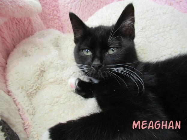 meaghan